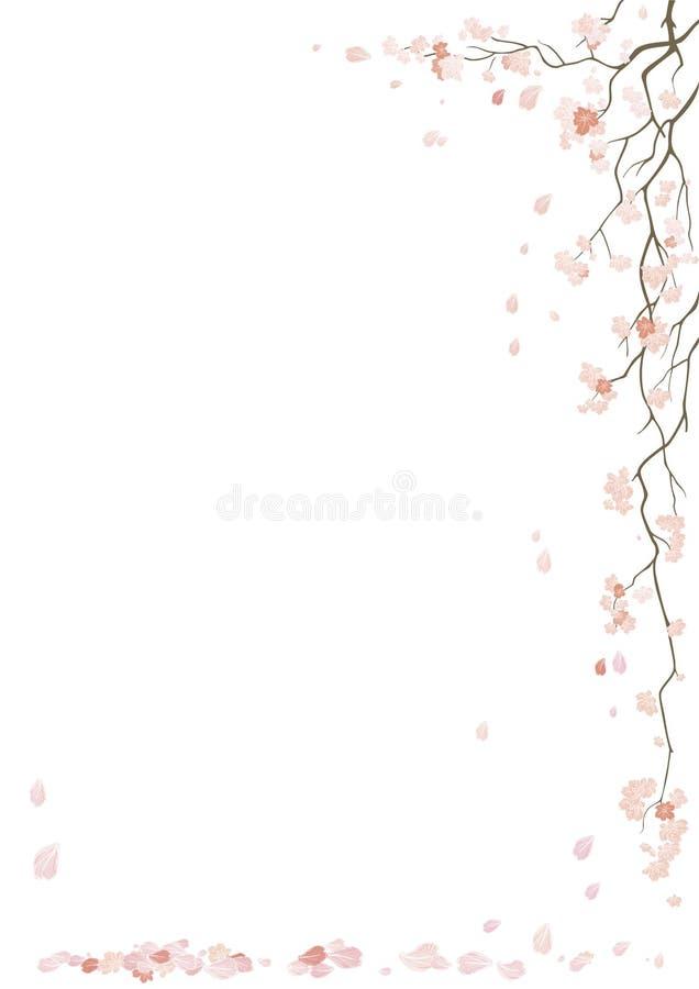 blomning sakura royaltyfri illustrationer
