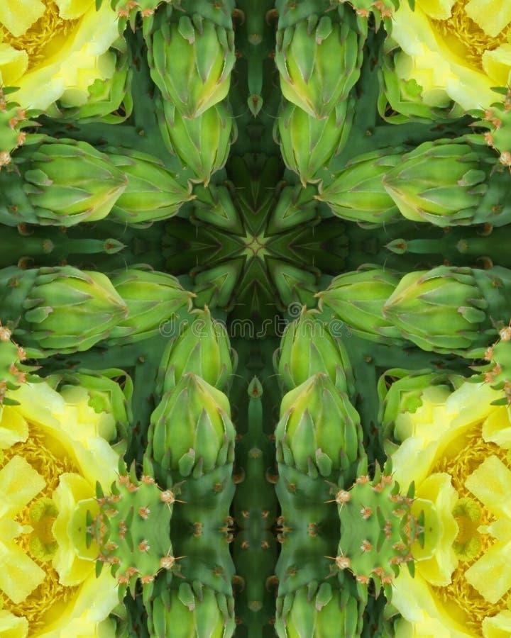 blomningkaktuskors royaltyfri illustrationer