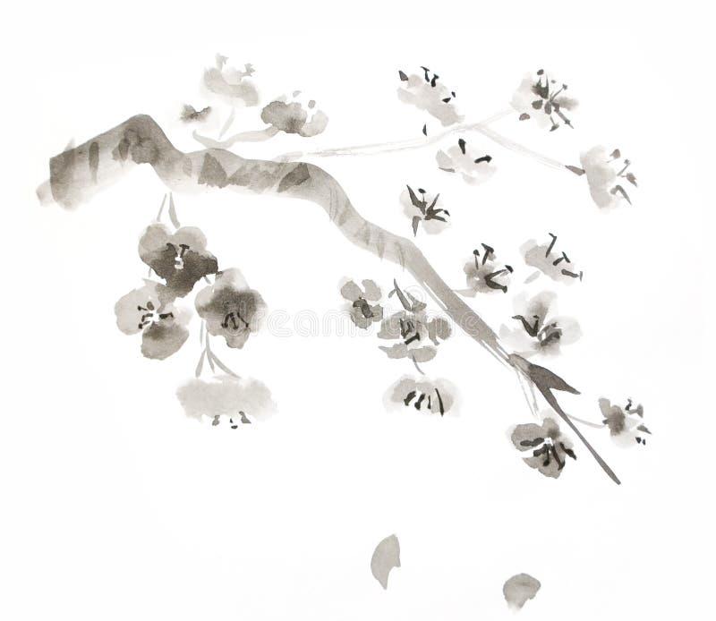 blomningplommon stock illustrationer