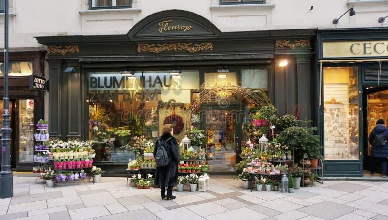 Blomsterhandel med levande växter i Wien arkivfoto