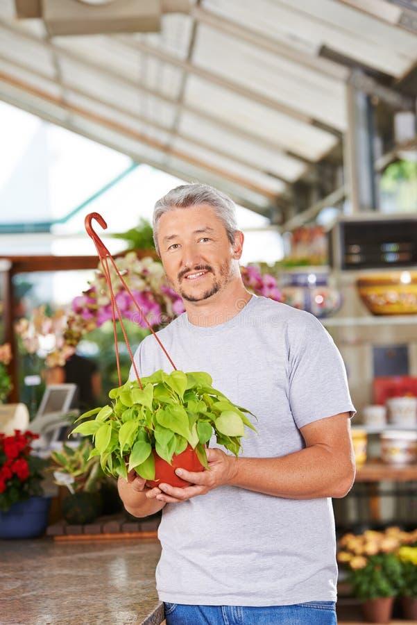Blomsterhandlare i blomsterhandeln med philodendronen arkivfoto