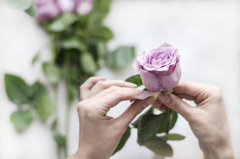 Blomsterhandlare på arbete Flicka som förbereder blommor för bukett arkivfoto