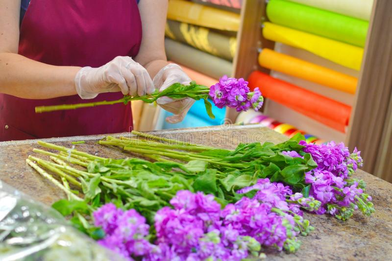 Blomsterhandlare p? arbete arkivbild