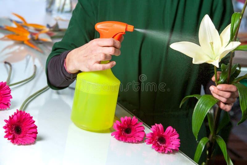 Blomsterhandlare som besprutar blomman med vatten. royaltyfri fotografi