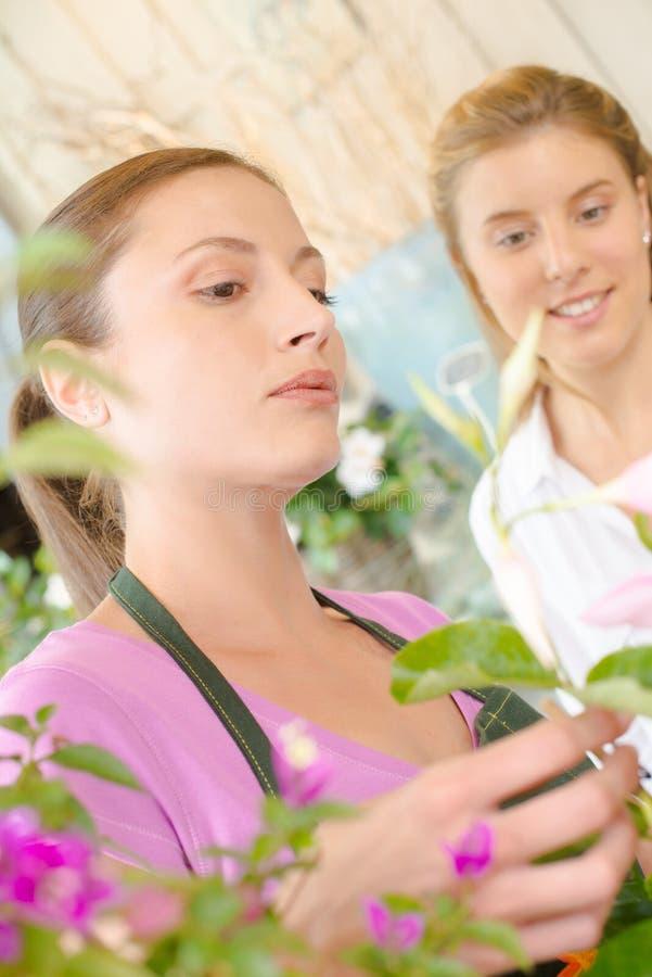 Blomsterhandlare som talar till den kvinnliga kunden arkivbild