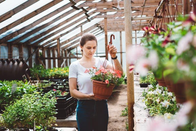 Blomsterhandlarearbete f?r ung kvinna i tr?dg?rd royaltyfri fotografi