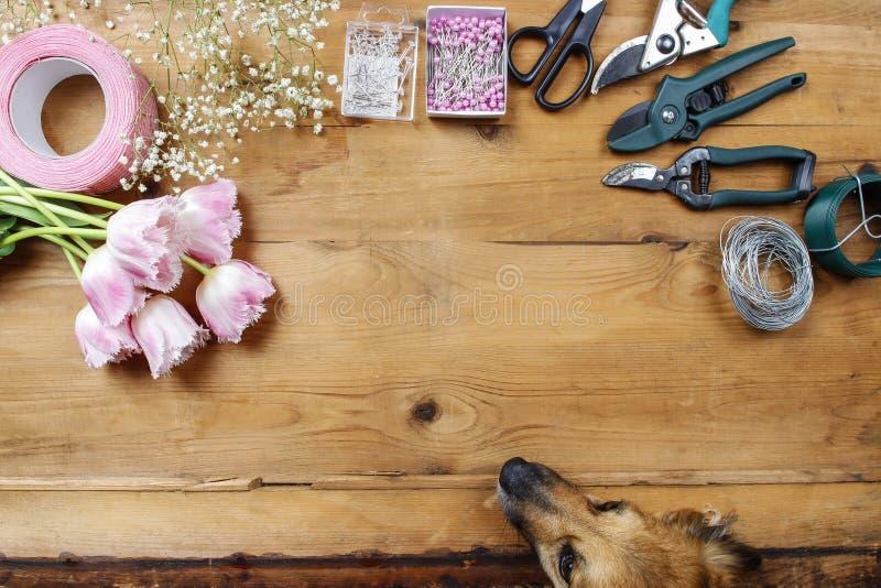 Blomsterhandlarearbetsplats: hund som ser blommor fotografering för bildbyråer