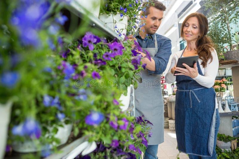 BlomsterhandlareLooking At Female kollega som använder minnestavlan royaltyfria foton