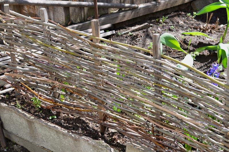 Blomsterrabatt som fäktas med ett naturligt staket royaltyfri bild
