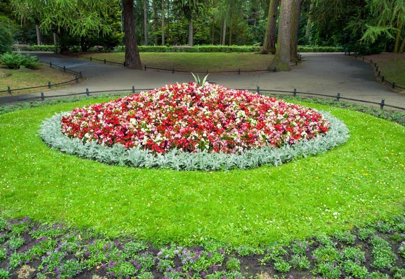 Blomsterrabatten i stad parkerar fotografering för bildbyråer
