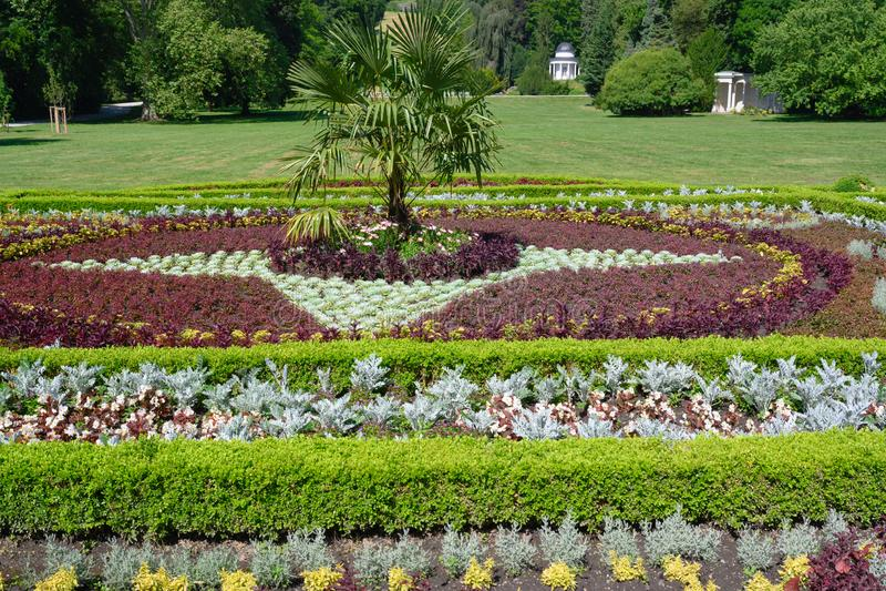 Blomsterrabatten på slotten Wilhelmhohe i Mountainpark, Bergpark, slott parkerar, Tyskland arkivfoton