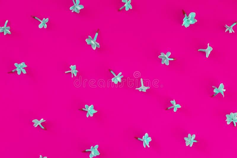 Blomstra bästa sikt för lila kronblad royaltyfri bild
