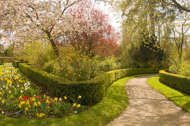blomstra trädgården fotografering för bildbyråer