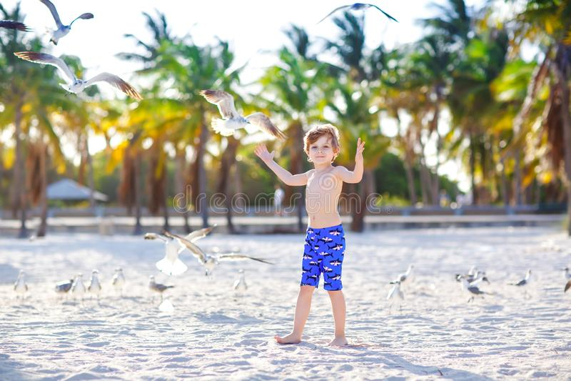 Blond adorable gorgeous little kid boy having fun on Miami beach, Key Biscayne. Happy healthy cute child playing with stock photos