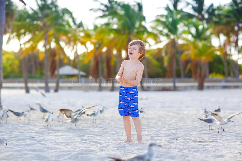 Blond adorable gorgeous little kid boy having fun on Miami beach, Key Biscayne. Happy healthy cute child playing with stock photography