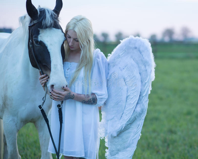 Blond angel looking after the horse stock images