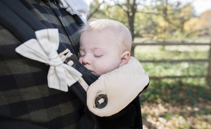 Blond Baby Girl Asleep in Carrier on Dad`s Chest Outside stock images