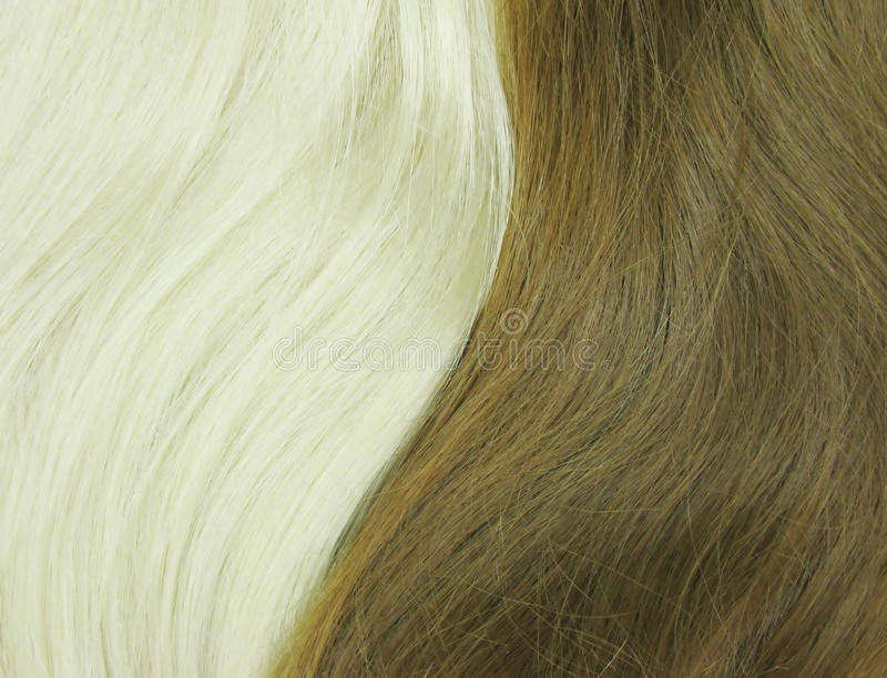Download Blond And Black Hair As Texture Background Stock Image - Image: 13338261