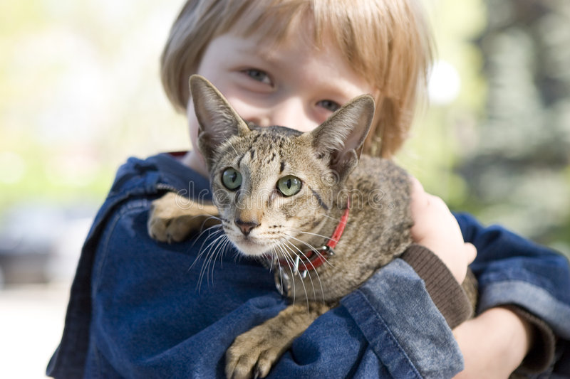 Blond Boy With Oriental Bred Cat Stock Images