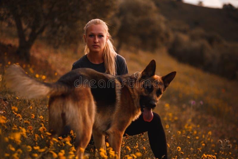 Blond flicka som spelar med hunden för tysk herde i ett fält av gula blommor arkivfoton