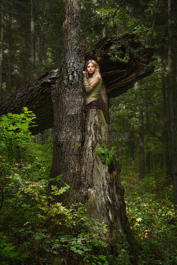 Blond girl in a magic forest stock photos