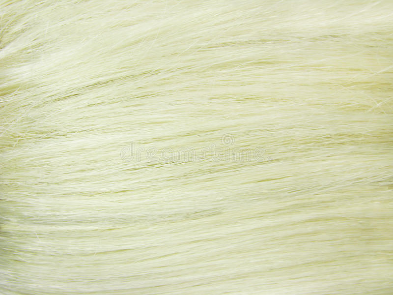 Download Blond Hair As Texture Background Stock Image - Image: 13380745