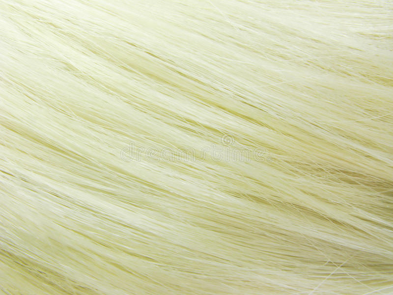 Blond Hair As Texture Background Royalty Free Stock Photos