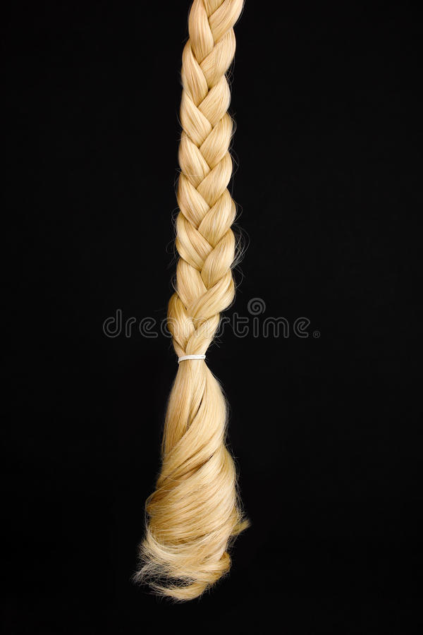 Download Blond hair braided stock photo. Image of blond, beautiful - 25829732