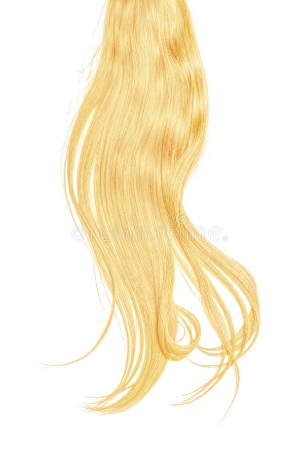 Blond hair isolated on white background. Long disheveled ponytail. Natural healthy hair isolated on white background. Detailed clipart for your collages and stock photography