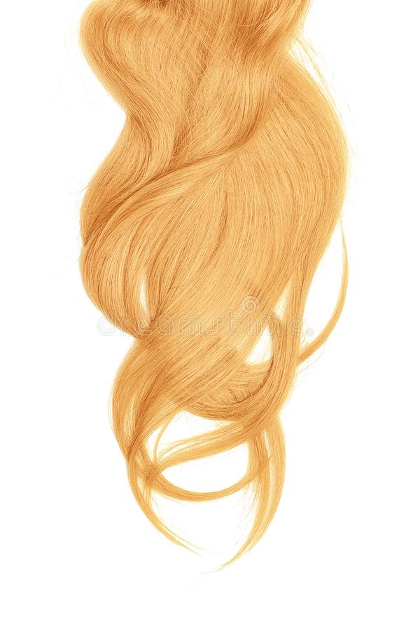 Blond hair, isolated on white background. Long and disheveled ponytail. Natural healthy hair isolated on white background. Detailed clipart for your collages and stock image