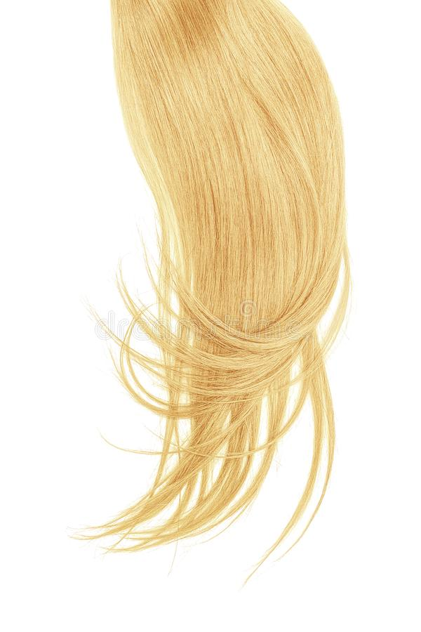 Blond hair, isolated on white background. Long and disheveled ponytail. Natural healthy hair isolated on white background. Detailed clipart for your collages and royalty free stock images