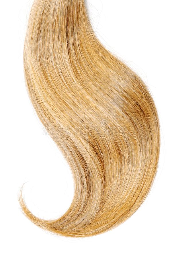 Blond hair, isolated on white background. Long and disheveled ponytail royalty free stock images