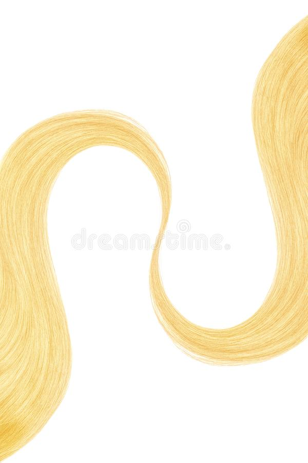 Blond hair isolated on white background. Long wavy ponytail. Natural healthy hair isolated on white background. Detailed clipart for your collages and royalty free stock photography