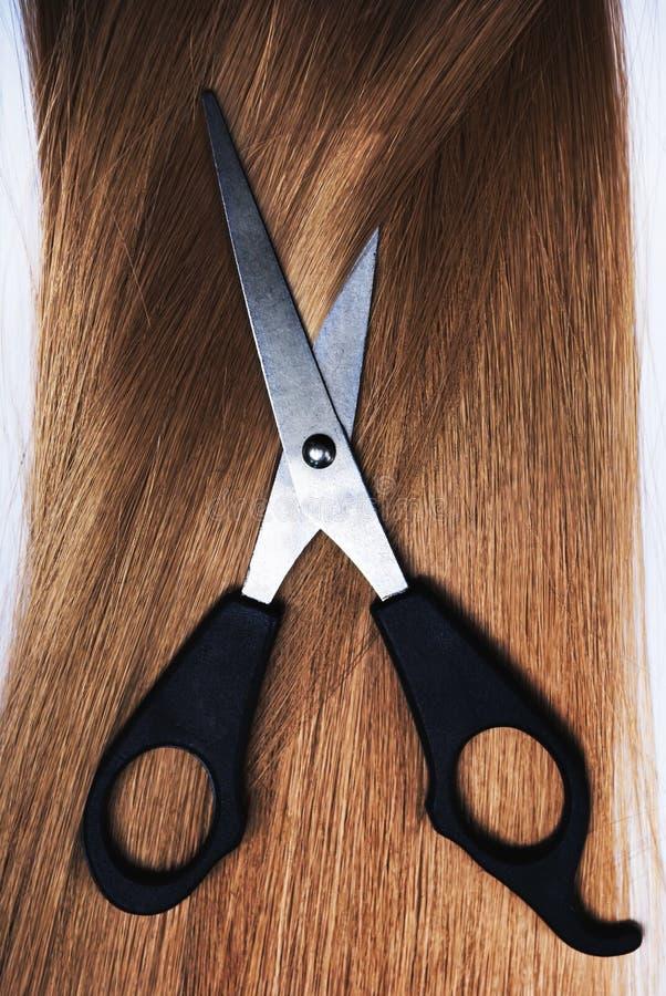 Blond Hair stock image