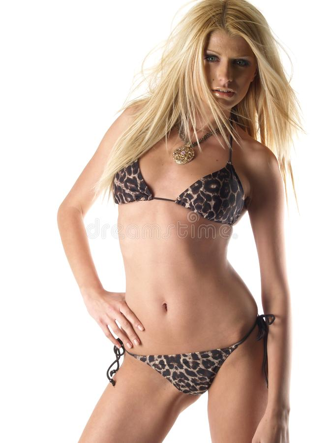Blond hot model 1119 royalty free stock photos