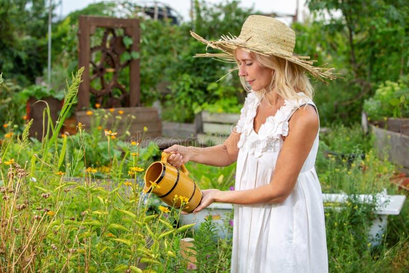Blond kvinna i den vita klänningen som bevattnar blommor i trädgården arkivfoto