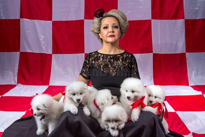 Blond kvinna med vita valpar royaltyfri foto