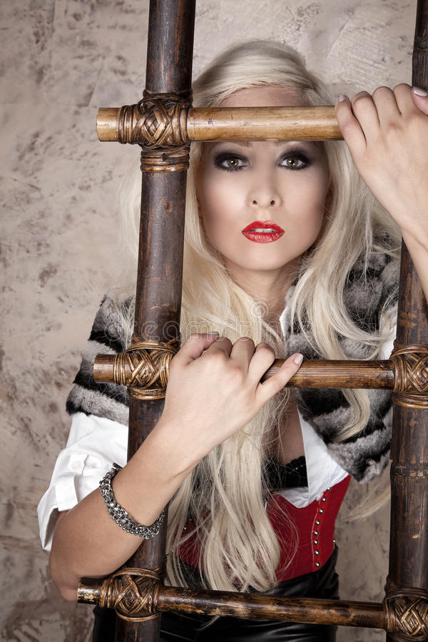 Download Blond with ladder stock photo. Image of glamor, woman - 21720340