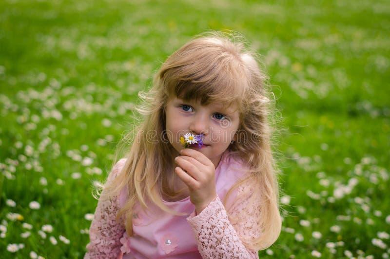 Download Blond meisje in weide stock foto. Afbeelding bestaande uit groen - 54085166