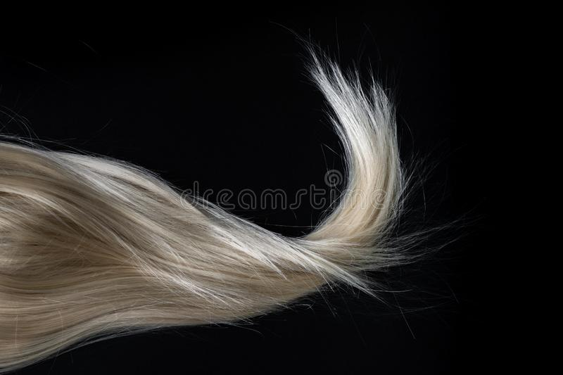Blond shiny hair on black. royalty free stock photos
