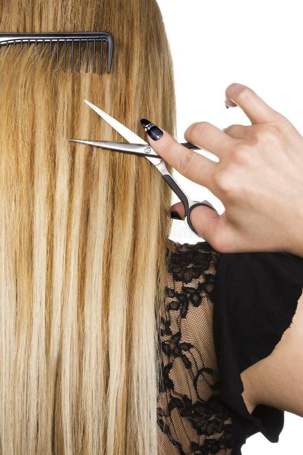 blond włosy obraz royalty free
