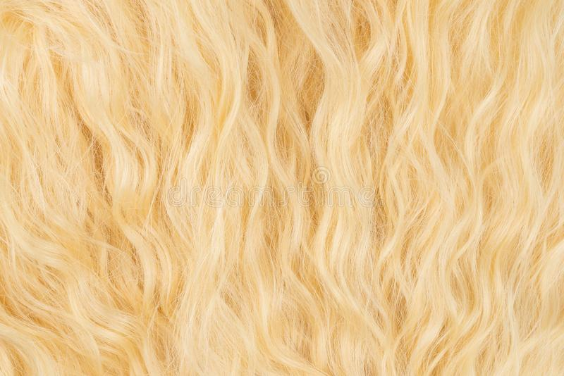Blond wavy hair pattern. Top view. Blond beautiful wavy hair pattern. Top view royalty free stock photos