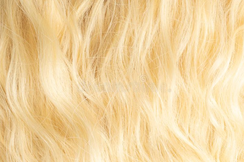 Blond wavy hair pattern. Top view. Blond beautiful wavy hair pattern. Top view royalty free stock photo