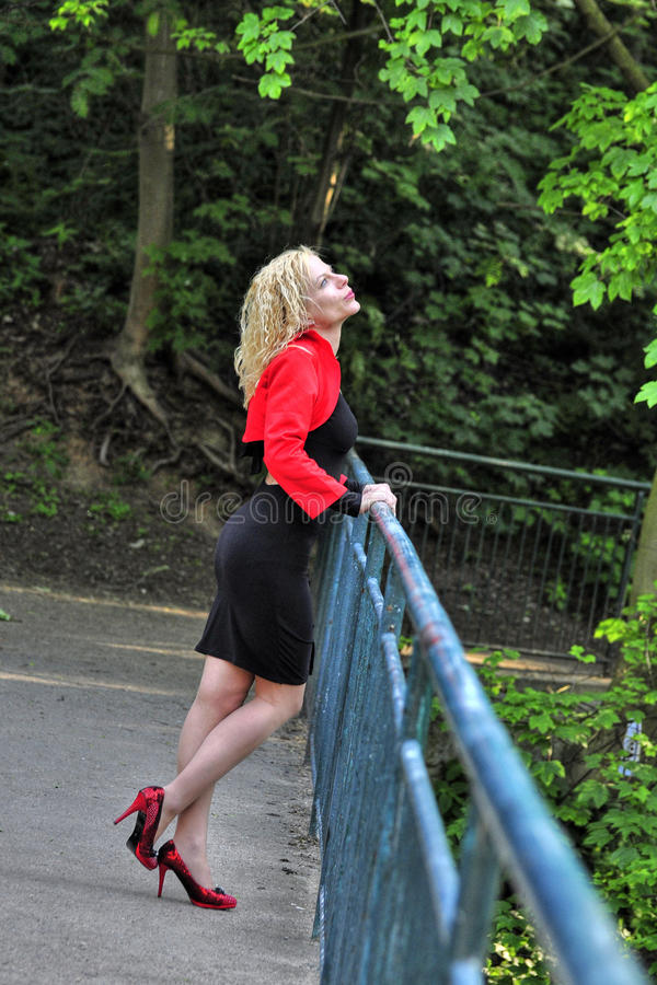 Download Blond Woman Royalty Free Stock Photos - Image: 28451738