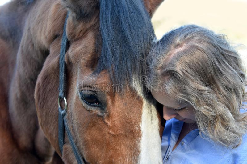 Blond woman and  her  horse. Woman stands close to  her horse. The old horse enjoys it and  trustingly  turns his head to the woman stock images