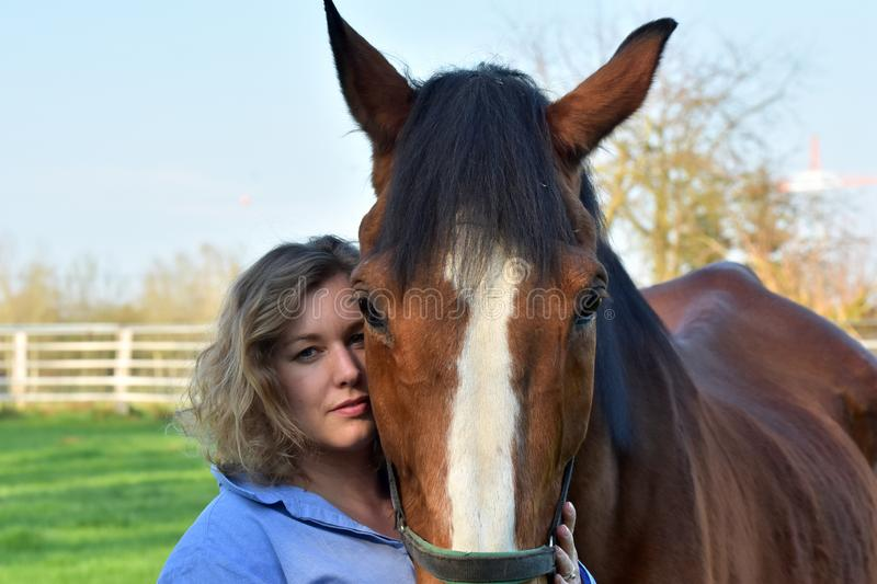 Blond woman hugs her  horse. Woman strokes her horse. The old horse enjoys it and  trustingly lays his head on her shoulder stock images