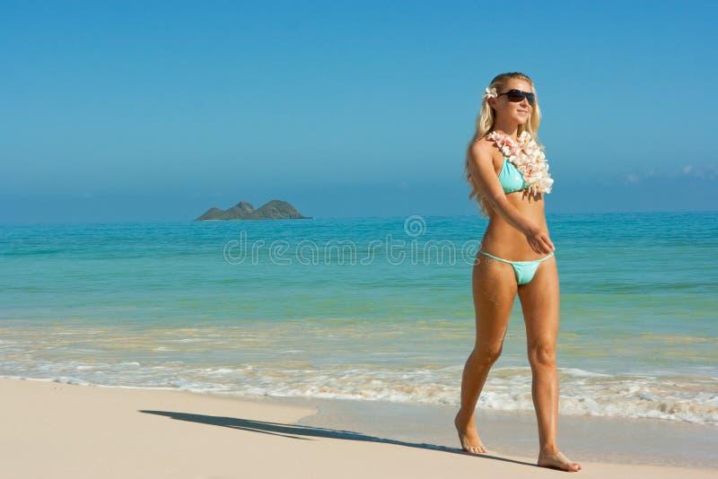 blonda hawaii arkivfoton