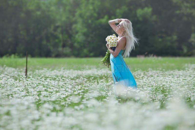 Blonde attirante dans le domaine de camomille image stock