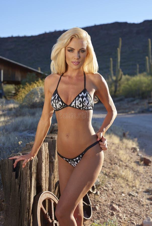 Blonde Beauty In Bikini. Beautiful blond model wearing bikini posing in Arizona ranch setting on sunny day stock photos