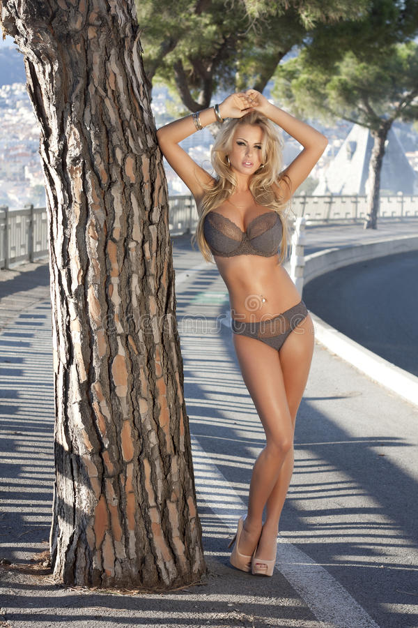 Download Blonde Beauty Posing In Lingerie. Stock Photo - Image: 35553806